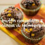 muffin-cioccolato-arancia-di-montersino