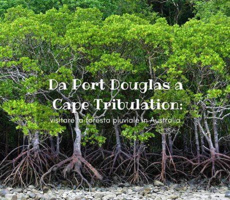 Cape Tribulation foresta pluviale Australia