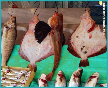 mercato-del-pesce-3